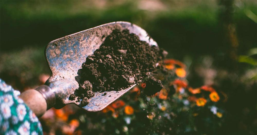 Priprema zemljista za setvu trave